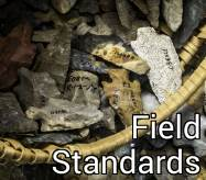 Field Standards Button