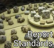 Report Standards Button