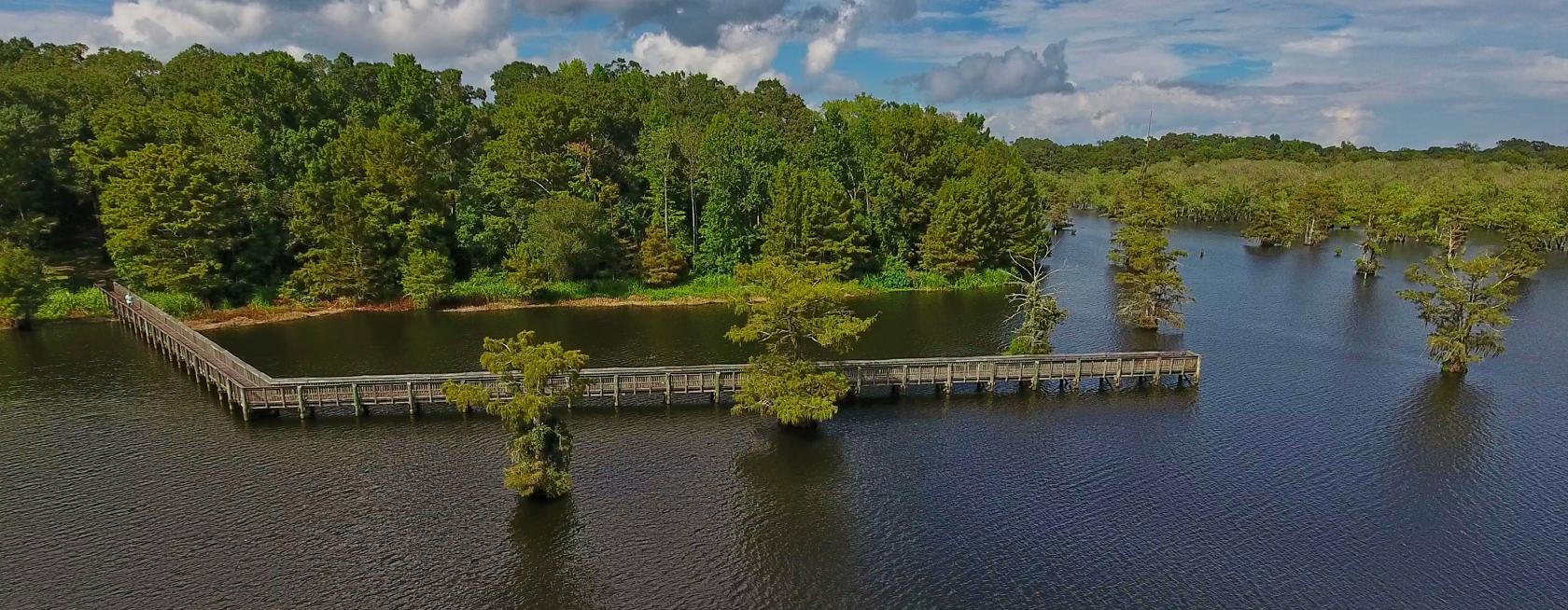 Fontainebleau State Park Talks - Mariagegironde