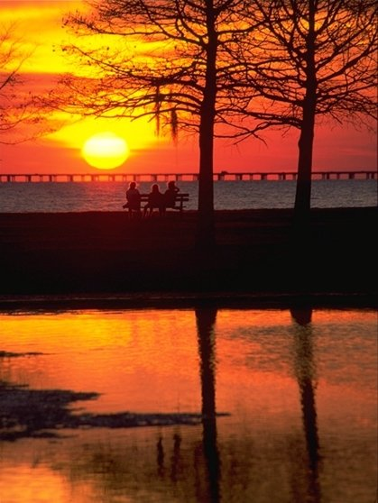Toyota Of New Orleans >> Fontainebleau State Park | Louisiana Office of State Parks