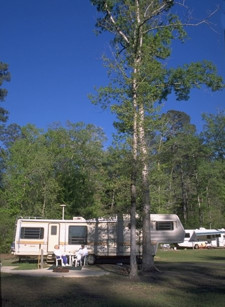 Jimmie Davis State Park Louisiana Office Of State Parks