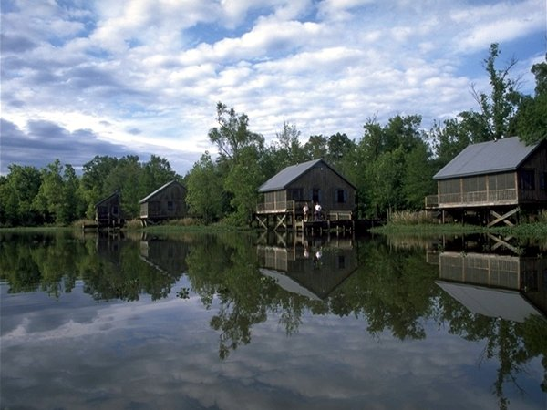 Cabins for rent toledo bend cabins for rent toledo bend for Fishing cabins in louisiana