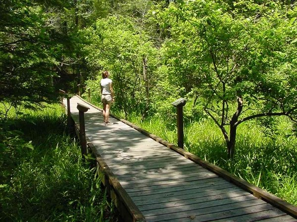 Louisiana State Arboretum State Preservation Area