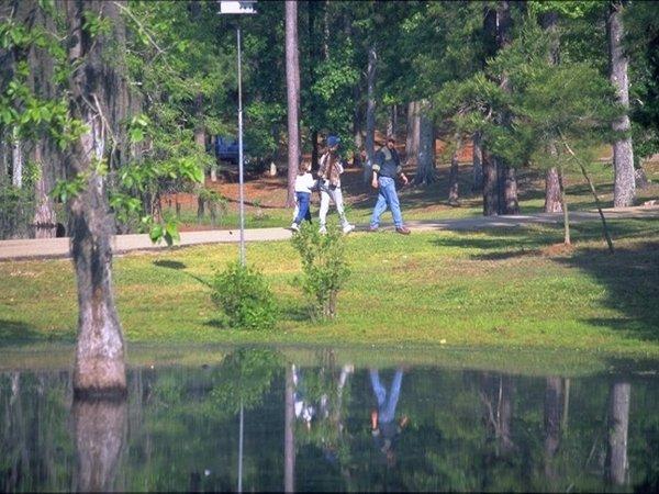 Sam Houston Jones State Park Louisiana Office Of State Parks
